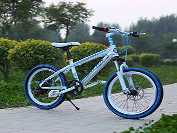 50-3-electric two wheeler.jpg